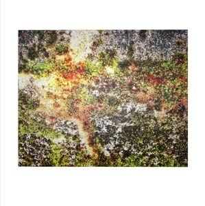 Autumn Abstraction Photography Print